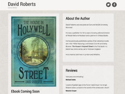 website and ebook development for self published author